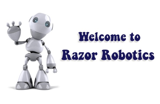 Welcome Robot