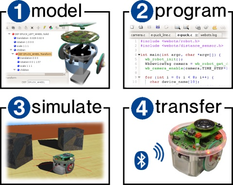 Webots development stages