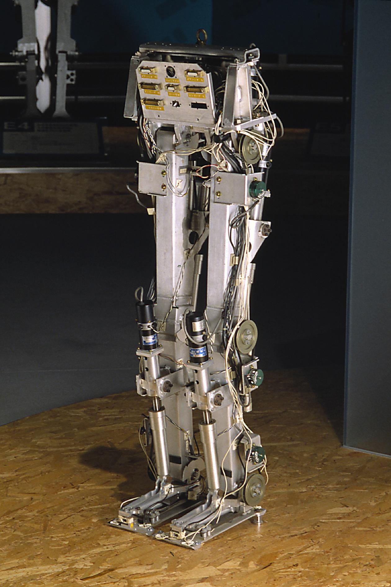Amazing Robots!