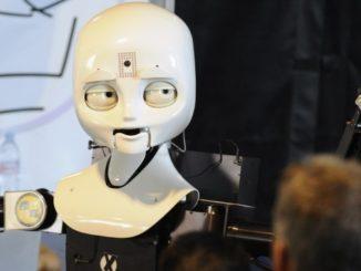 Octavia Humanoid Robot