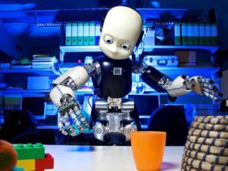 RobotCub - RobotCub Project