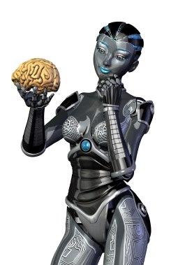 Robot studying human brain